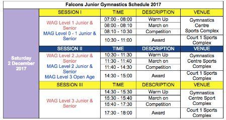 Falcons Junior Gymnastics Schedule