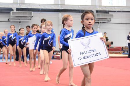 Falcons Junior Gymnastics Results
